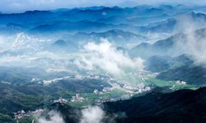 【河南诗人】焦勇的诗《春光》 || 中国网络诗歌同盟总干事桃花源荐读